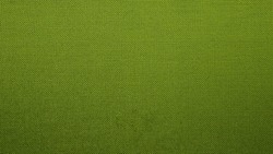 Fabric texture background. Green Lime