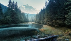 Fabulous misty morning scene of nature. View of Forest lake in highland with rocky peak on background. Stunning wild nature during sunrise. Amazing natural summer scenery Creative image for design