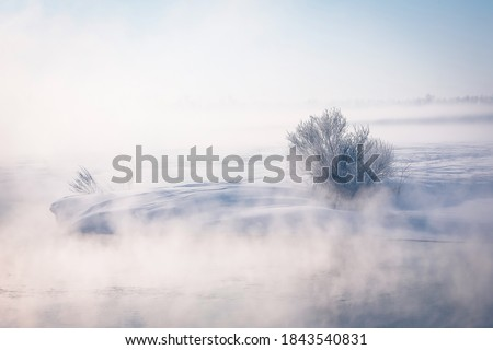 Fabulous winter landscape on the river. Fog. Bright winter sunny day. Winter in Russia, Altay. Christmas card. New Year. Foto stock ©
