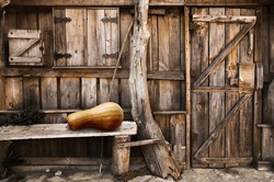 Facade of an old wooden shack with closed door and window and a bench with a pumpkin