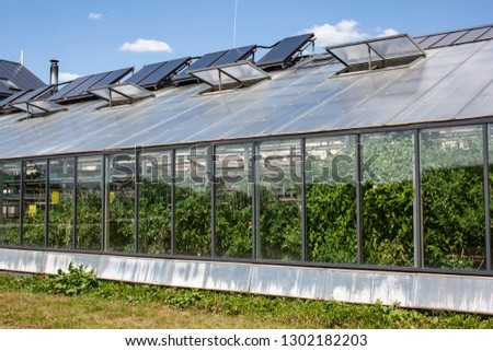 Facade of modern greenhouse made by glass, green plants inside grennhouse, behind the glass.