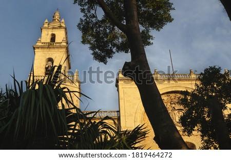 Facade of the cathedral of Merida 'San Ildefonso' behind trees during last sun, Merida, Yucatan, Mexico