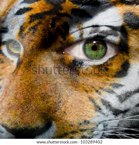 Face with green eye painted with siberian tiger