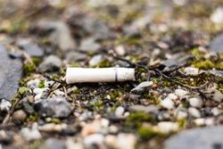 fag end cigarette butt stub outdoor stone ground closeup