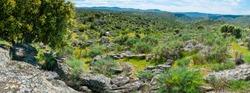 Faia Brava nature reserve in Côa Valley in Portugal in Europe