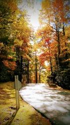 Fairway Forest in Sapphire NC