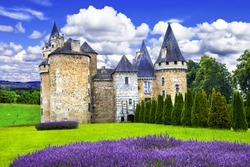 Fairy castles of France series, medieval castle with lavander fi