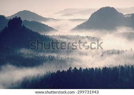 Fairy daybreak in a beautiful hills. Peaks of hills are sticking out from foggy background, the fog is yellow and orange due to sun rays. The fog is swinging between trees.