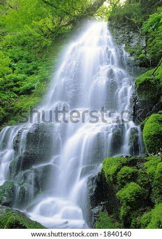 Fairy Falls - a waterfall in the Columbia River Gorge area, Oregon