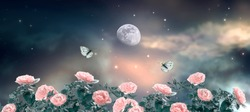 Fairytale fantasy photo background of magical deep dark night sky with shining stars, moon, clouds, beautiful fairy pink rose flower garden and flying butterflies. Idyllic fabulous panoramic scene.