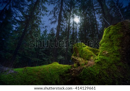Stock Photo Fairytale night forest by the moonlight. Fallen tree trunk, covered by green moss, on foreground.