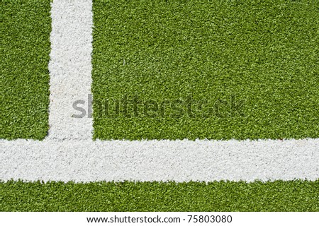 Fake Grass and Line