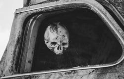 Fake human skull hung in a car.