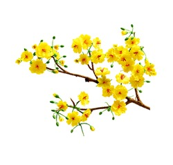 Fake Ochna branches to decorate for celebrating Lunar New Year. It's also called Tet holidays in Vietnam, isolated on white background