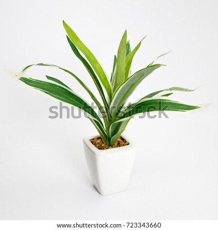 Fake plants in pot  isolated on white background - Shutterstock ID 723343660