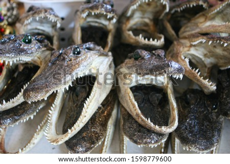 Fake plastic alligators for sale at a market stall in central New Orleans, Louisiana, America.  Louisiana is well known for alligators.