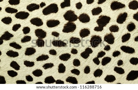 fake tiger skin that made from leather