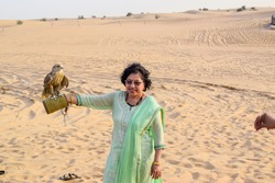 Falcon Bird sitting on the hand of asian lady with sunglasses. Falcon is the national bird of Dubai and tourist pay a lot pf money to make it sit on their hands