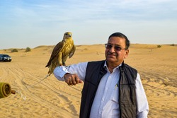 Falcon Bird sitting on the hand of asian man. Falcon is the national bird of Dubai and tourists pay a lot of money to make it sit on their hands