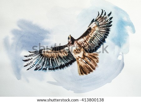 Falcon - Painting