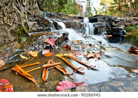 Fall at Dismal Falls. Leaves in front of a waterfall spelling FALL.