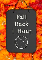 Fall Back 1 hour time change message on a chalkboard sign on pumpkins with fall leaves and a straw hay