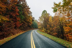 Fall color along the Blue Ridge Parkway in Virginia.