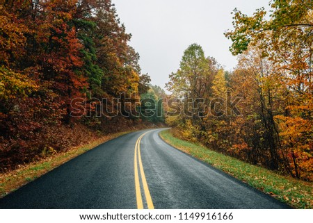Fall color along the Blue Ridge Parkway in Virginia. #1149916166
