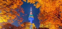 Fall color change in Seoul and N seoul tower in autumn at night, Seoul city, South Korea