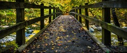 fall colored leaves are on a bridge across a moving creek with wood railing on both side, in a panorama image.