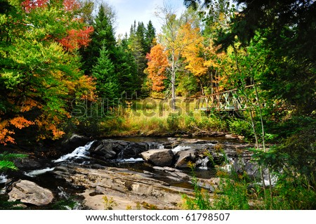 Fall colors and stream with metal bridge