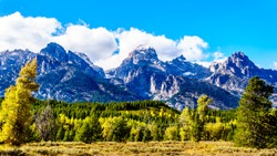 Fall Colors and the tall mountain peaks of Middle Teton, Grand Teton, Mount Owen and Teewinot Mountain in the Teton Range of Grand Teton National Park in Wyoming, United States