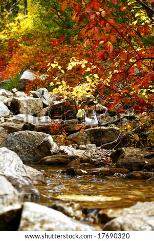 Fall Colors at a quiet stream