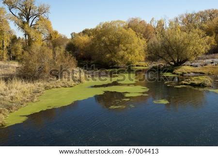 Fall colors border a river's slack water.