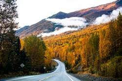 Fall Colors in Alaska Nature Mountains