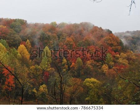 fall colors mountain #786675334