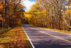 Fall Colors on a scenic road
