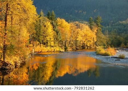 Fall Colors on the Stillaguamish River of Washington State #792831262