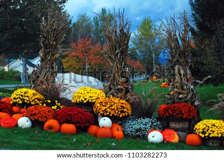 Fall Decor sits under stormy skies in Vermont #1103282273