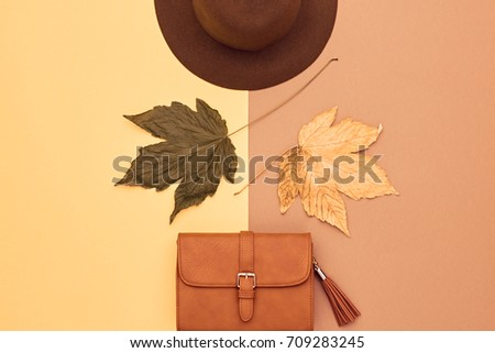 Fall Fashion Glamour Lady Look.Trendy Handbag Clutch. Stylish. Flat lay. Leaves. Autumn Minimal. Vanilla Pastel colors. Vintage