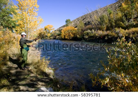 Fall fly fishing in the Truckee River near Reno, Nevada