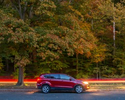 Fall foilage with red ford escape at Rock Creek Park