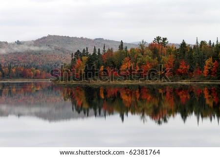 Fall foliage along Androscoggin River in New Hampshire