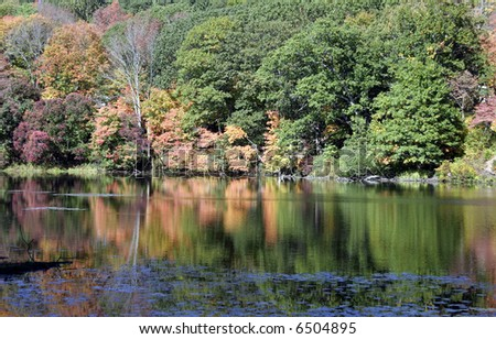 Fall foliage along the CT river in chester