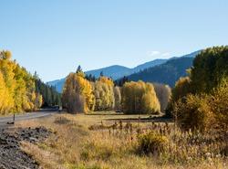 Fall foliage along US highway 2 in Cascade Mountains - Washington state, USA