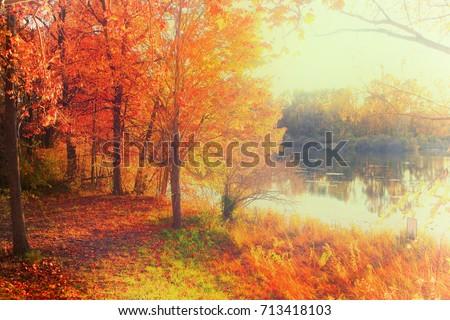 Fall foliage by the lake #713418103