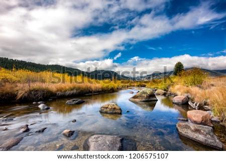 Fall foliage in Colorado #1206575107