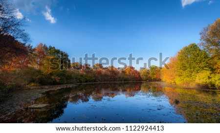 Fall foliage reflected in a pond inside Great Swamp National Wildlife Refuge in New Jersey