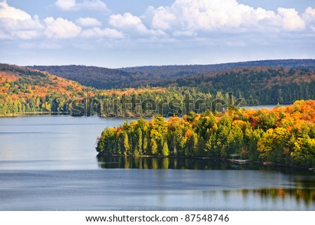 Fall forest of colorful autumn trees on islands in calm lake