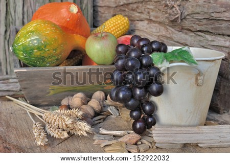 Fall fruits and vegetables in a campaign setting #152922032